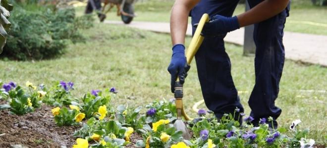 jardineria Escuelas de Oficios